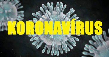 koronavirus-nyito