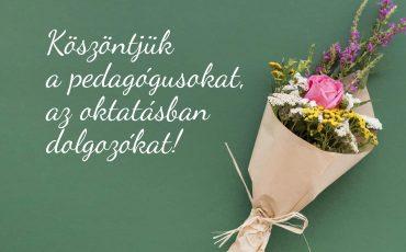 pedagogusnap (Small)